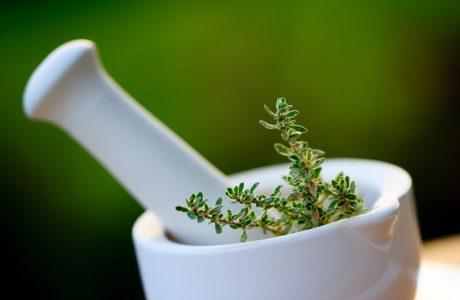 צמחי מרפא מערביים